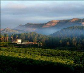 Mist over the village of Pla de Corrals