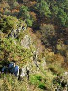 Lande de Liscuis walking area