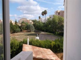 View from back door