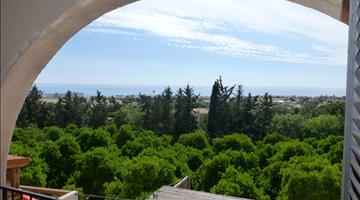property in Chlorakas