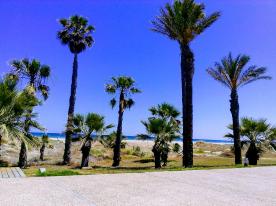 Taken at park Castellon Beach