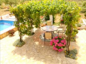 patio view from verandah