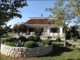 property in Zaton