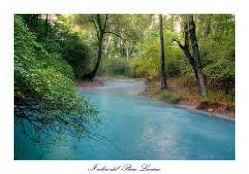 Parco Lavino Resort