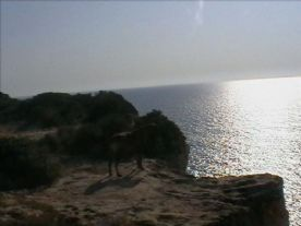 View from Akamas nearby
