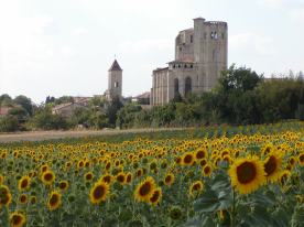 Sunflowers - the symbol of Gascony - and the Collegiale Church of La Romieu