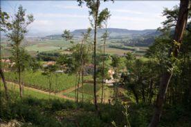 property in Grancona