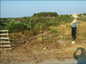 property in Kythira