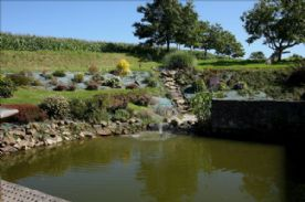 Fresh water fed fish pond/ landscaped