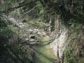 rio Madonna