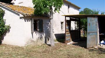 property in Corinaldo