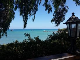 Malanda Beach 7 minutes away!