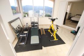 Gym / Bedroom