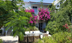property in Maroni