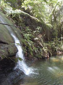 property in Salvador