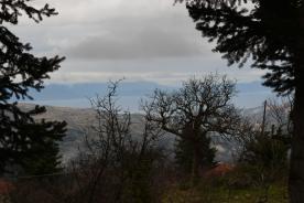 property in Ano Synoikia Trikala