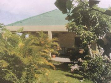 property in Borabod, Daet