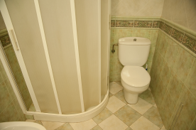 House downstairs shower/toilet