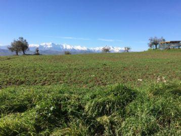 property in Morrodoro