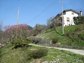 Upper driveway