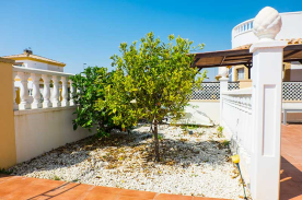 Front garden with two orange trees
