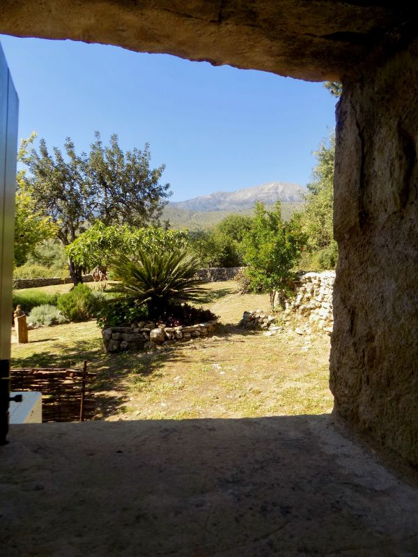 View from the main bathroom window of the front - south facing garden and orange grove