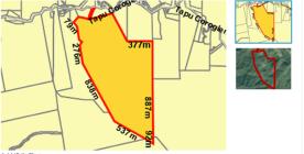 Part 84 Block X1 Hastings Survey District