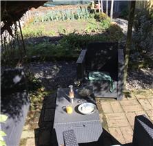 Garden sitting area with vine pergola