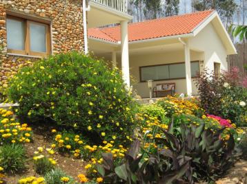 property in Vinho