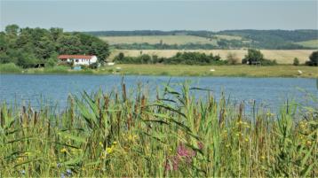 property in Manastir