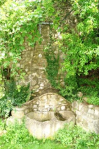 Water deposit in the garden