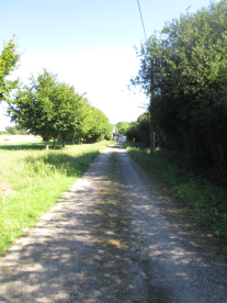private path to access the house from main road