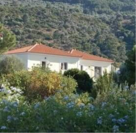 property in Vathy