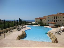 Large Freeform Pool