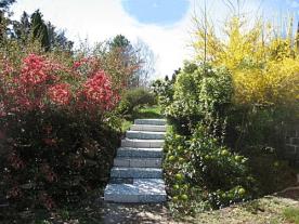 "artwork ""Stairway of the Sun"""
