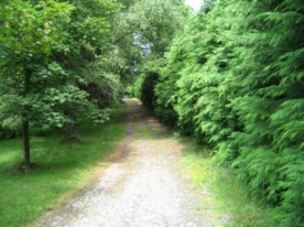 private tarmac driveway leading to the front gate