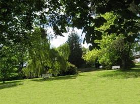 parkland area below villa