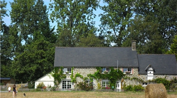 property in Pleine-Fougères