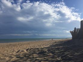 wild beach coast