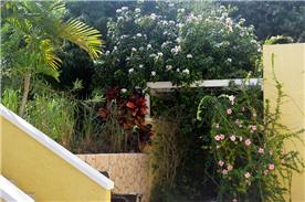 Trellis on front terrace