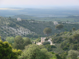 Distant view of Three of the 6 houses