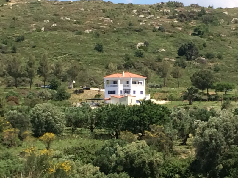 1. Tranquil and beautiful setting amid olive groves