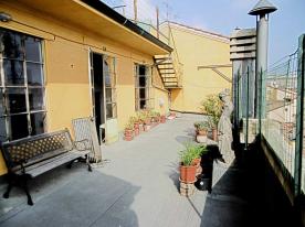 Terrace 2/2