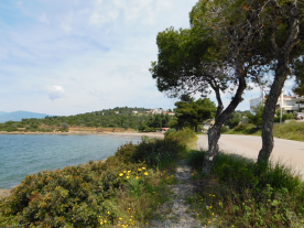 View towards Zefyros