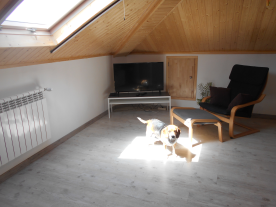 First floor living room. Beagle not incuded