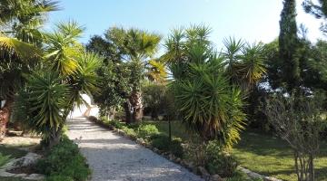 property in Lavega Pera