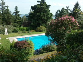 Large swimming pool in mature, secluded gardens