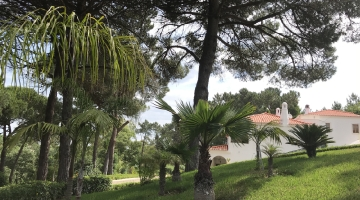property in Belas
