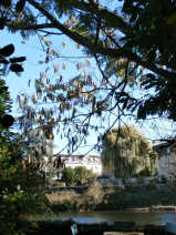 View from the riverside garden