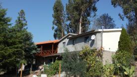 property in Pero Viseu